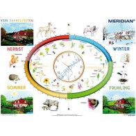 Vier Jahreszeiten - rytmy przyrody - produkt z tej samej kategorii